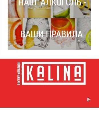 kalina-landing